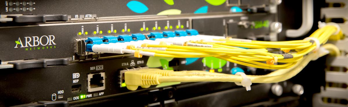 OVH a mis en place une protection contre les attaques DDoS, dont bénéficient l'ensemble des serveurs dédiés.